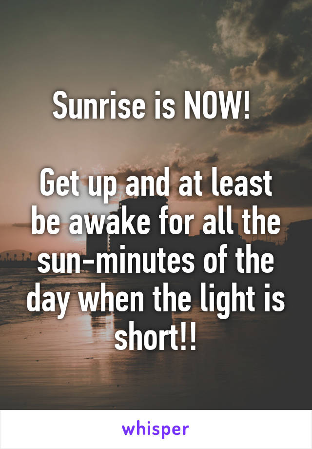 Sunrise is NOW!   Get up and at least be awake for all the sun-minutes of the day when the light is short!!