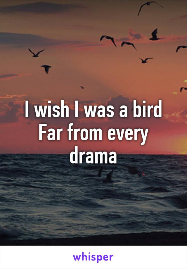I wish I was a bird Far from every drama