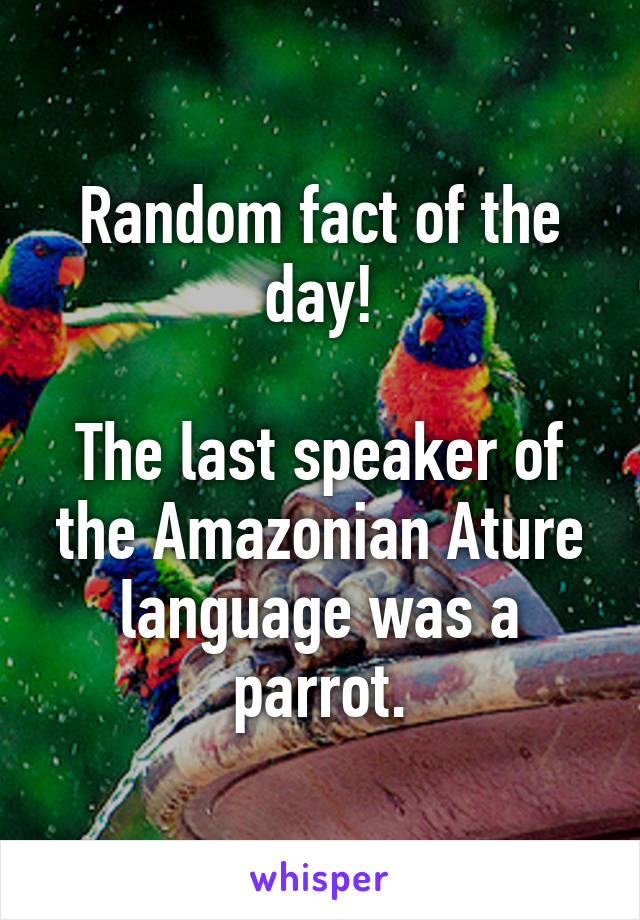 Random fact of the day!  The last speaker of the Amazonian Ature language was a parrot.