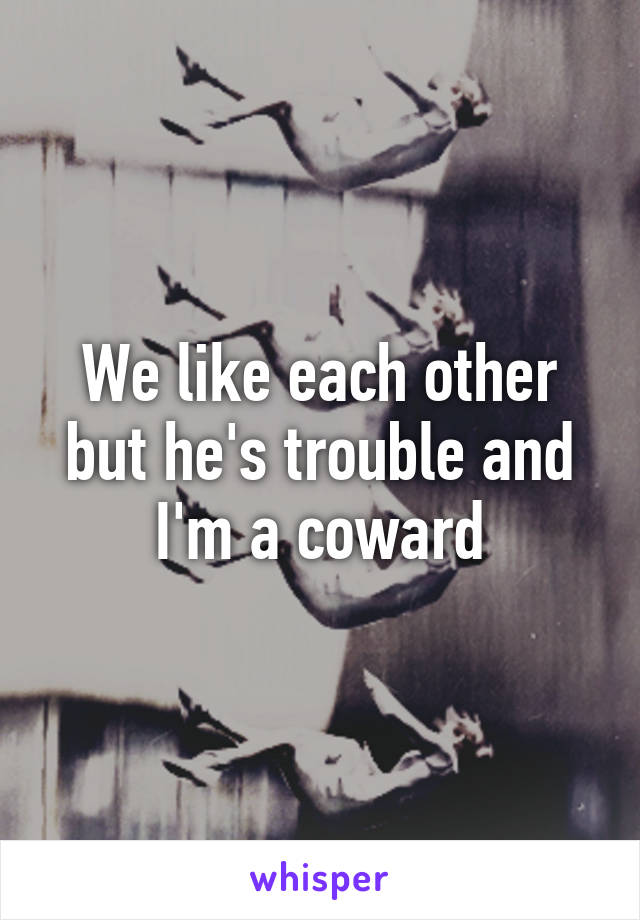We like each other but he's trouble and I'm a coward