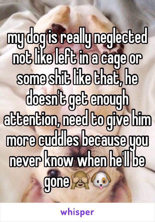 my dog is really neglected not like left in a cage or some shit like that, he doesn't get enough attention, need to give him more cuddles because you never know when he'll be gone🙈🐶