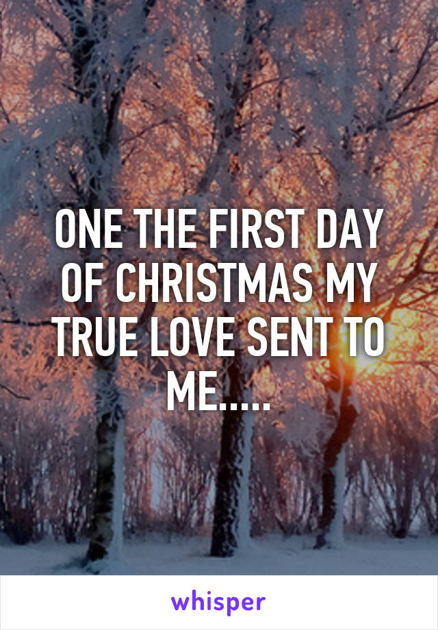 ONE THE FIRST DAY OF CHRISTMAS MY TRUE LOVE SENT TO ME.....