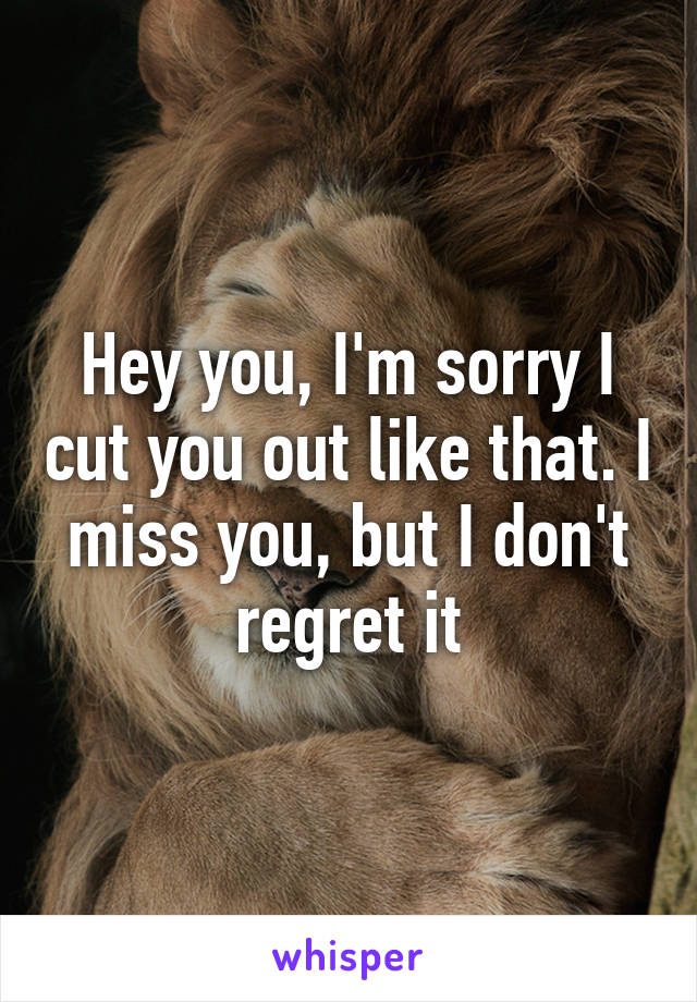 Hey you, I'm sorry I cut you out like that. I miss you, but I don't regret it