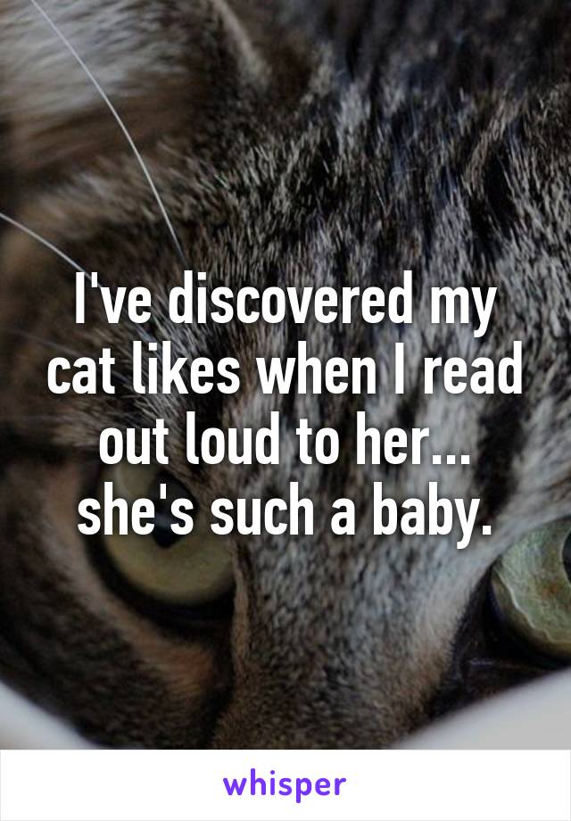 I've discovered my cat likes when I read out loud to her... she's such a baby.
