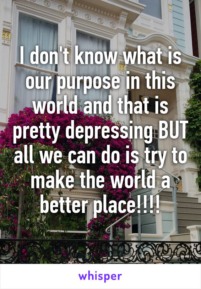 I don't know what is our purpose in this world and that is pretty depressing BUT all we can do is try to make the world a better place!!!!