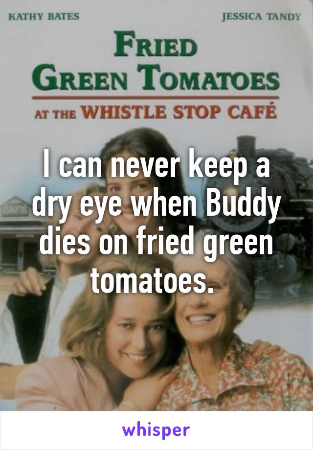 I can never keep a dry eye when Buddy dies on fried green tomatoes.
