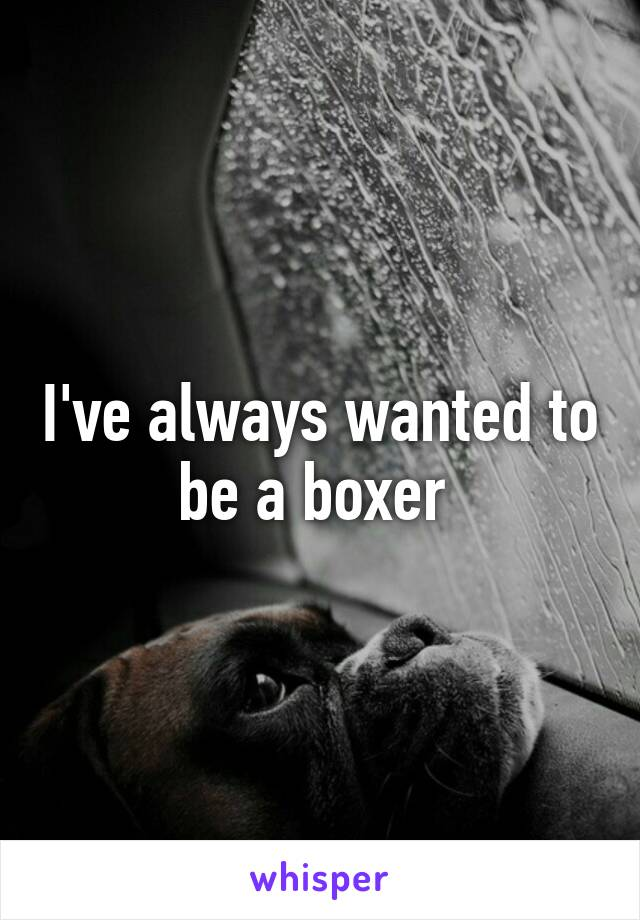 I've always wanted to be a boxer