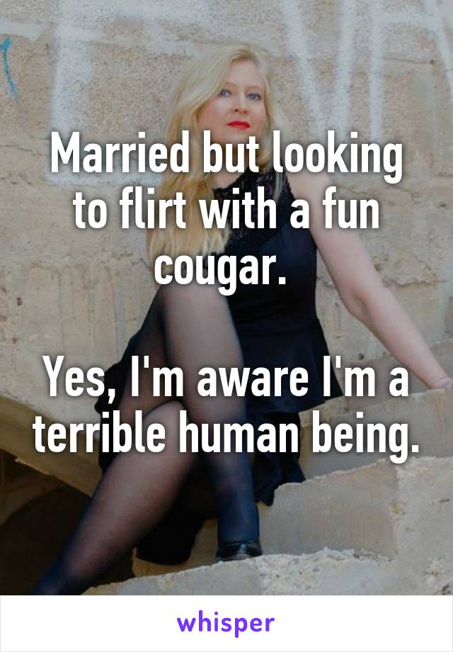 Im looking for a cougar
