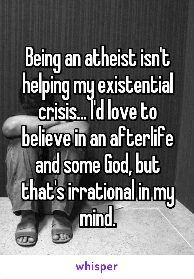 Being an atheist isn't helping my existential crisis... I'd love to believe in an afterlife and some God, but that's irrational in my mind.