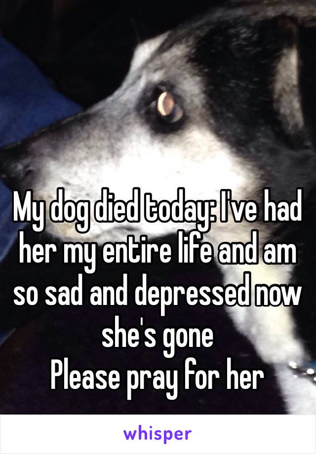 my dog died today i ve had her my entire life and am so sad and