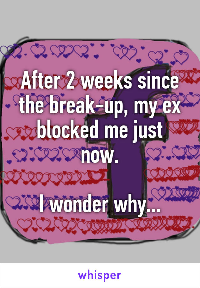 After 2 weeks since the break-up, my ex blocked me just now.  I wonder why...