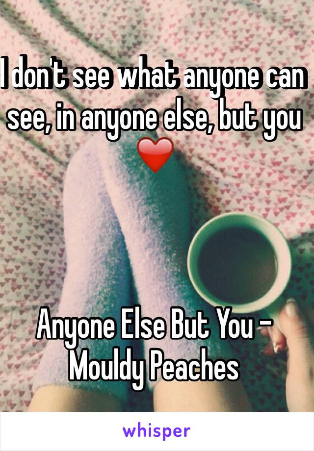 I don't see what anyone can see, in anyone else, but you ❤️    Anyone Else But You - Mouldy Peaches