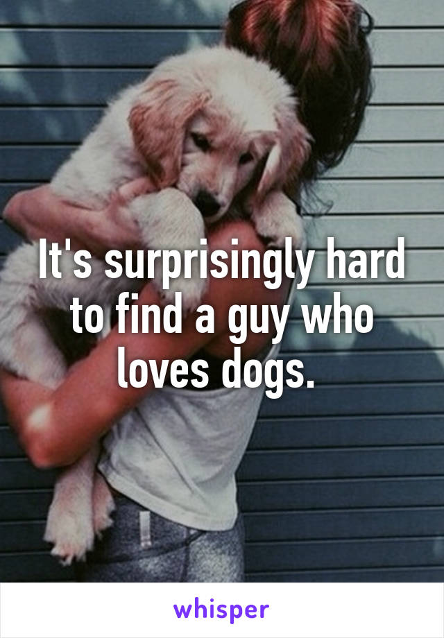 It's surprisingly hard to find a guy who loves dogs.