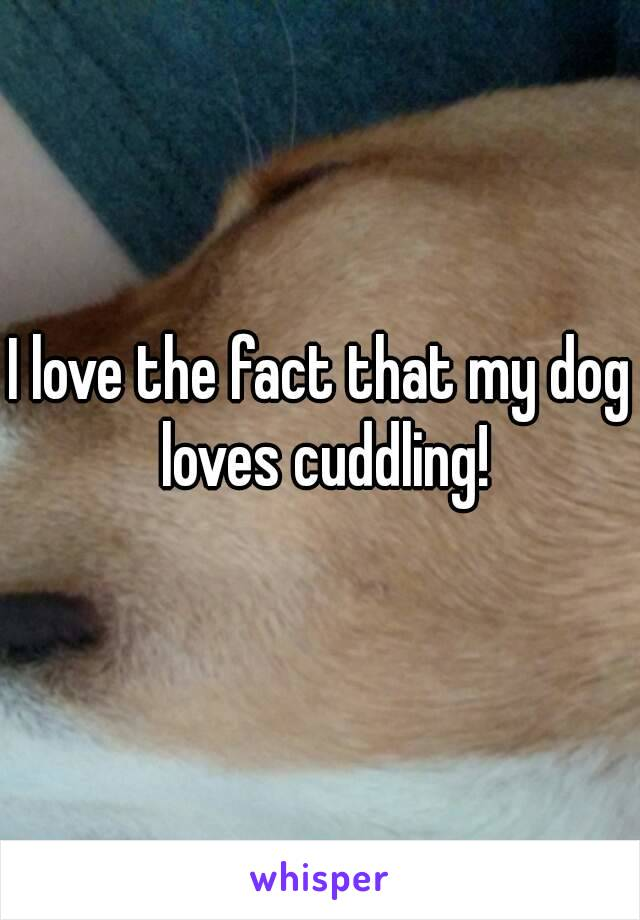 I love the fact that my dog loves cuddling!