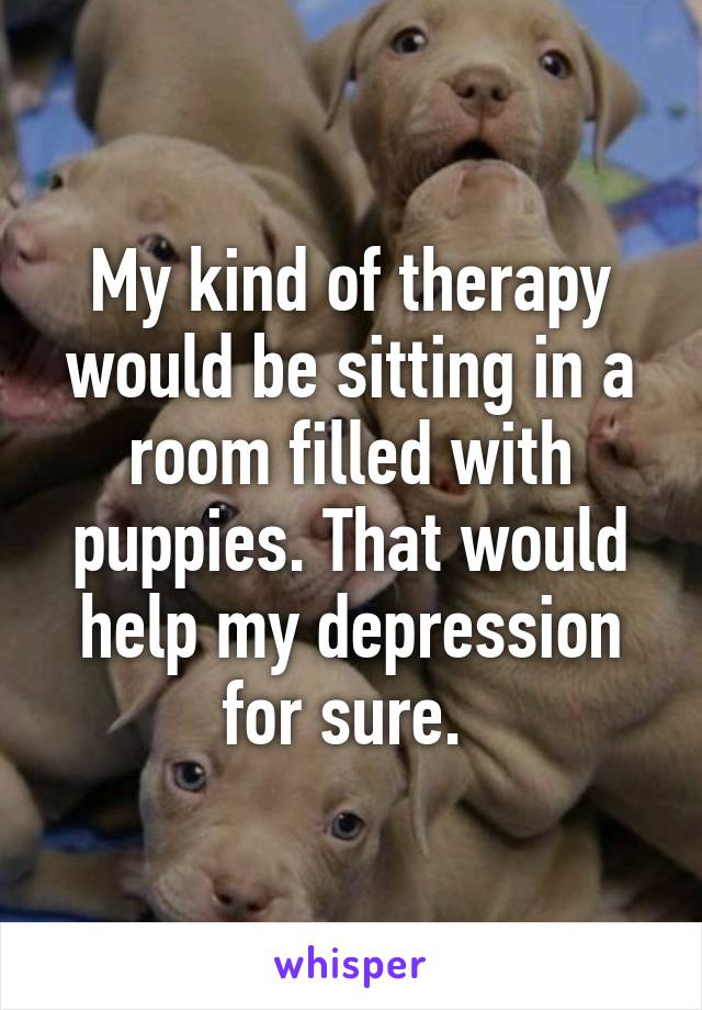 My kind of therapy would be sitting in a room filled with puppies. That would help my depression for sure.