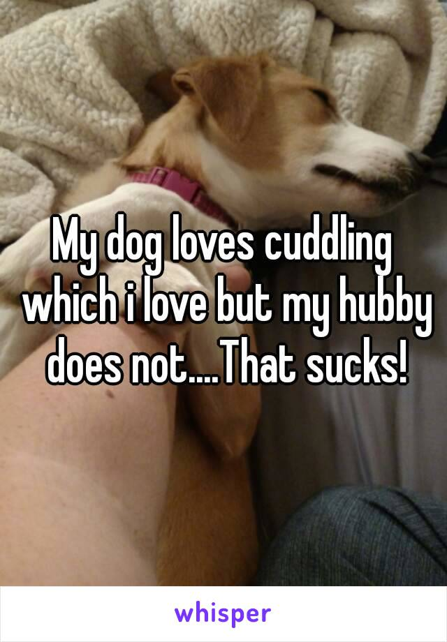 My dog loves cuddling which i love but my hubby does not....That sucks!