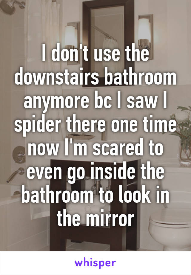 I don't use the downstairs bathroom anymore bc I saw I spider there one time now I'm scared to even go inside the bathroom to look in the mirror