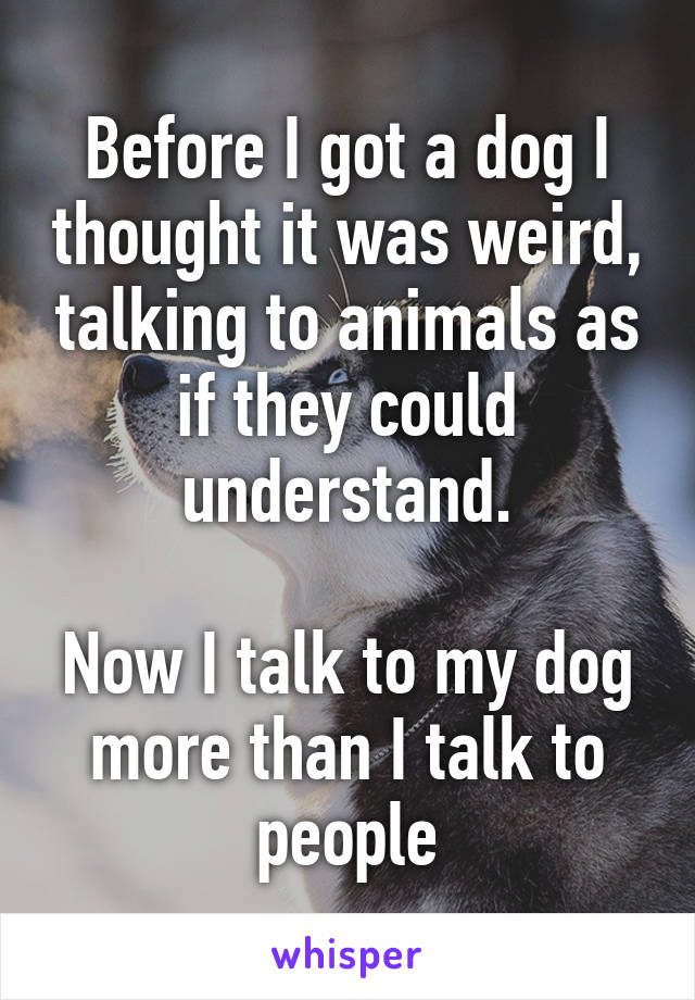 Before I got a dog I thought it was weird, talking to animals as if they could understand.  Now I talk to my dog more than I talk to people
