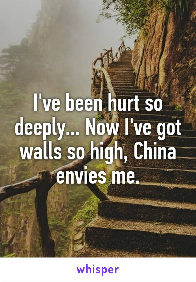I've been hurt so deeply... Now I've got walls so high, China envies me.