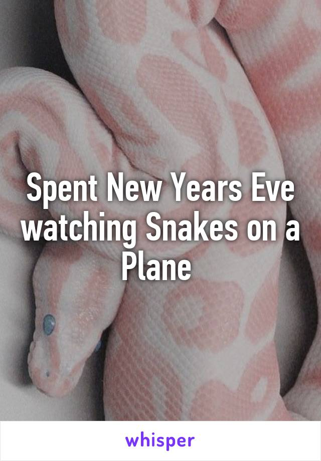 Spent New Years Eve watching Snakes on a Plane