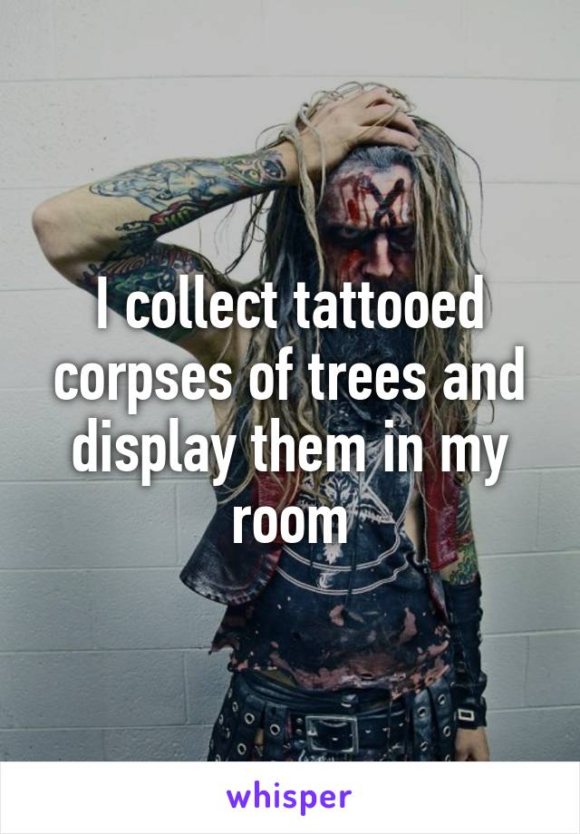 I collect tattooed corpses of trees and display them in my room