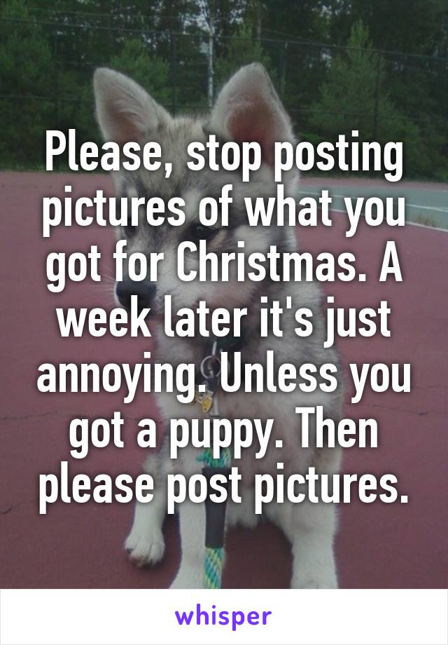 Please, stop posting pictures of what you got for Christmas. A week later it's just annoying. Unless you got a puppy. Then please post pictures.