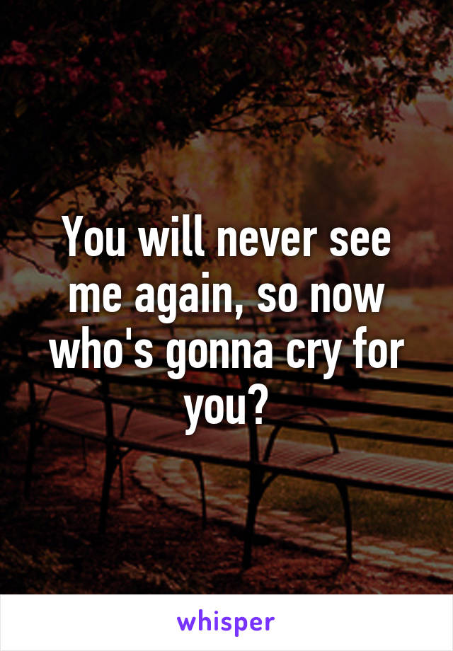 You will never see me again, so now who's gonna cry for you?