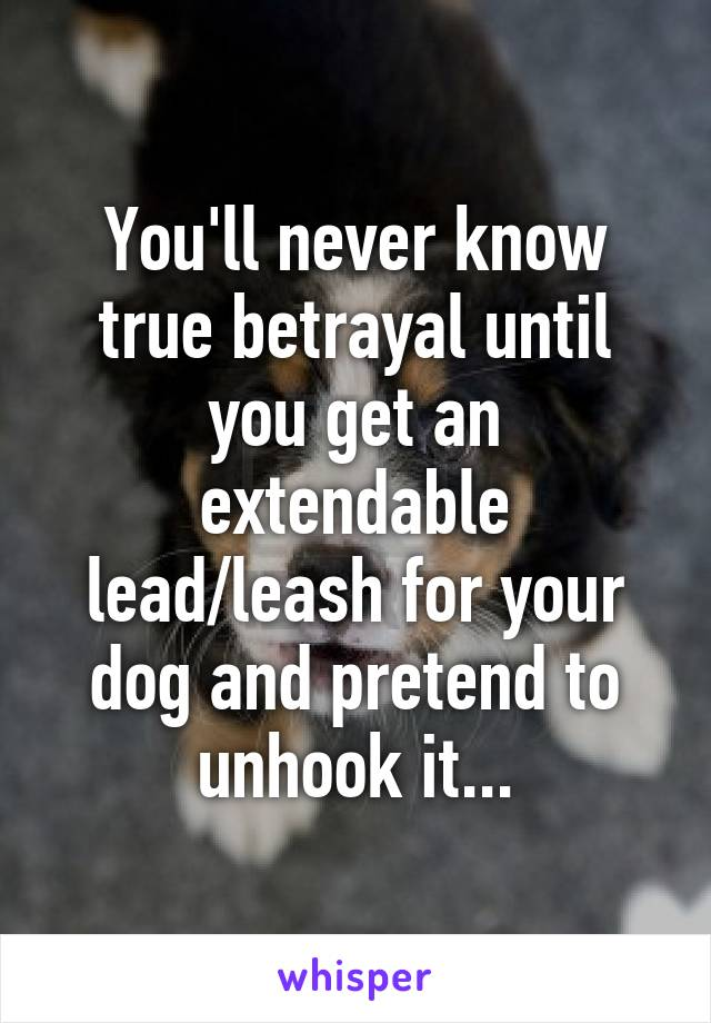 You'll never know true betrayal until you get an extendable lead/leash for your dog and pretend to unhook it...