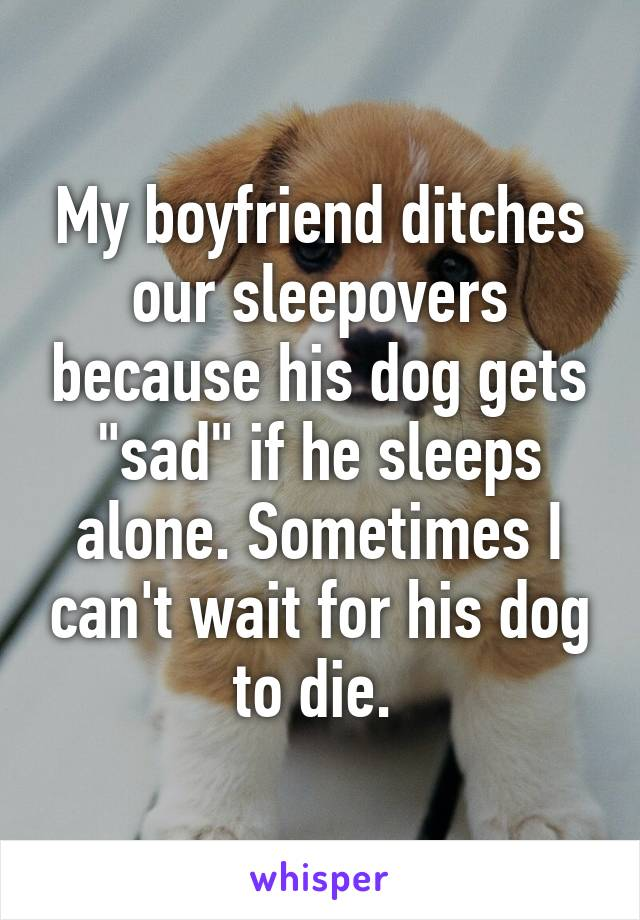"My boyfriend ditches our sleepovers because his dog gets ""sad"" if he sleeps alone. Sometimes I can't wait for his dog to die."