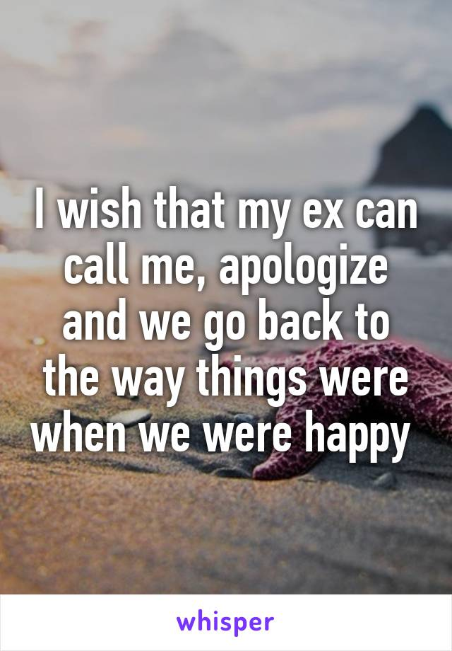 I wish that my ex can call me, apologize and we go back to the way things were when we were happy
