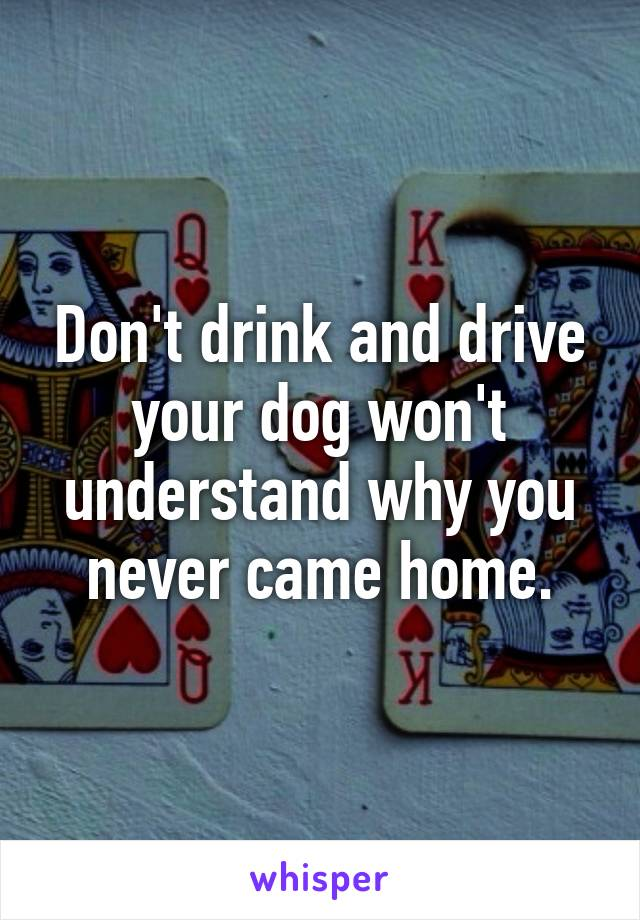Don't drink and drive your dog won't understand why you never came home.