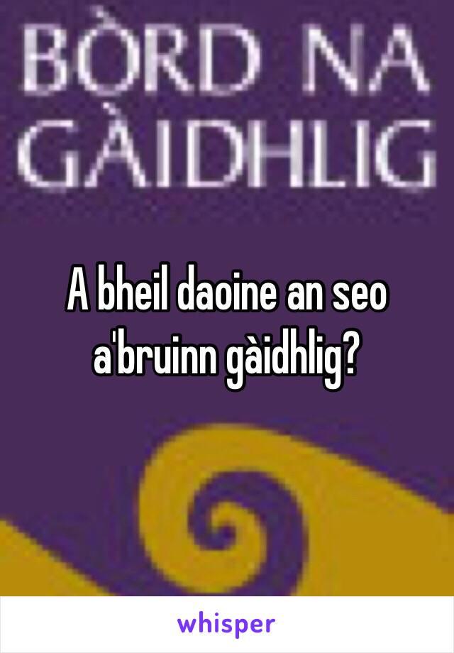 A bheil daoine an seo a'bruinn gàidhlig?