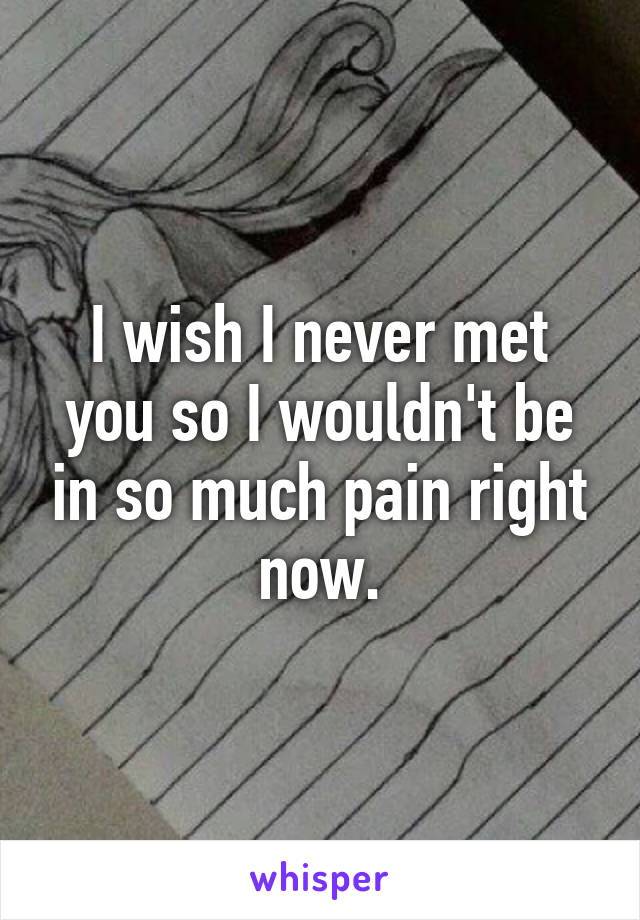I wish I never met you so I wouldn't be in so much pain right now.