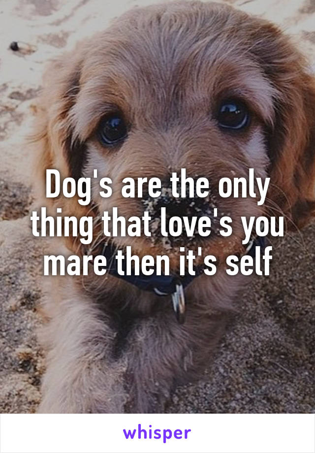 Dog's are the only thing that love's you mare then it's self