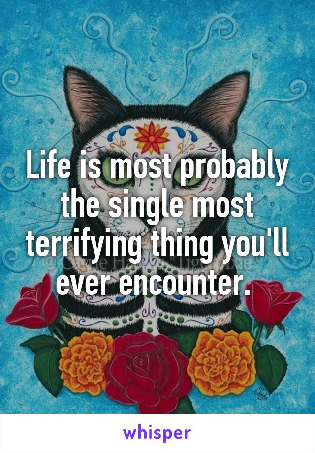 Life is most probably the single most terrifying thing you'll ever encounter.