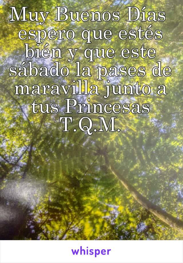 Muy Buenos Días espero que estés bién y que este sábado la pases de maravilla junto a tus Princesas T.Q.M.