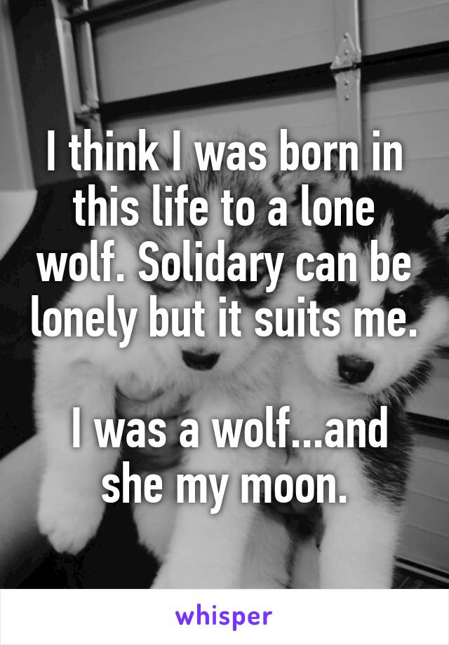 I think I was born in this life to a lone wolf. Solidary can be lonely but it suits me.   I was a wolf...and she my moon.