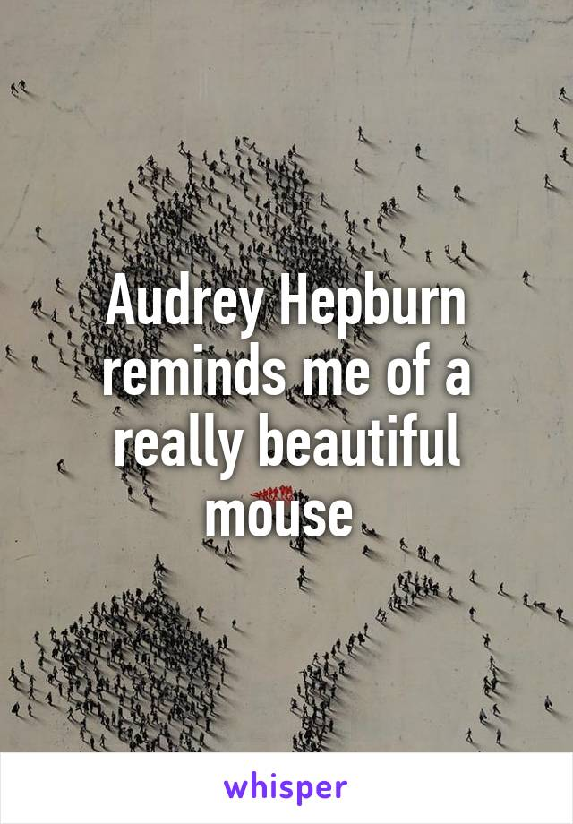 Audrey Hepburn reminds me of a really beautiful mouse