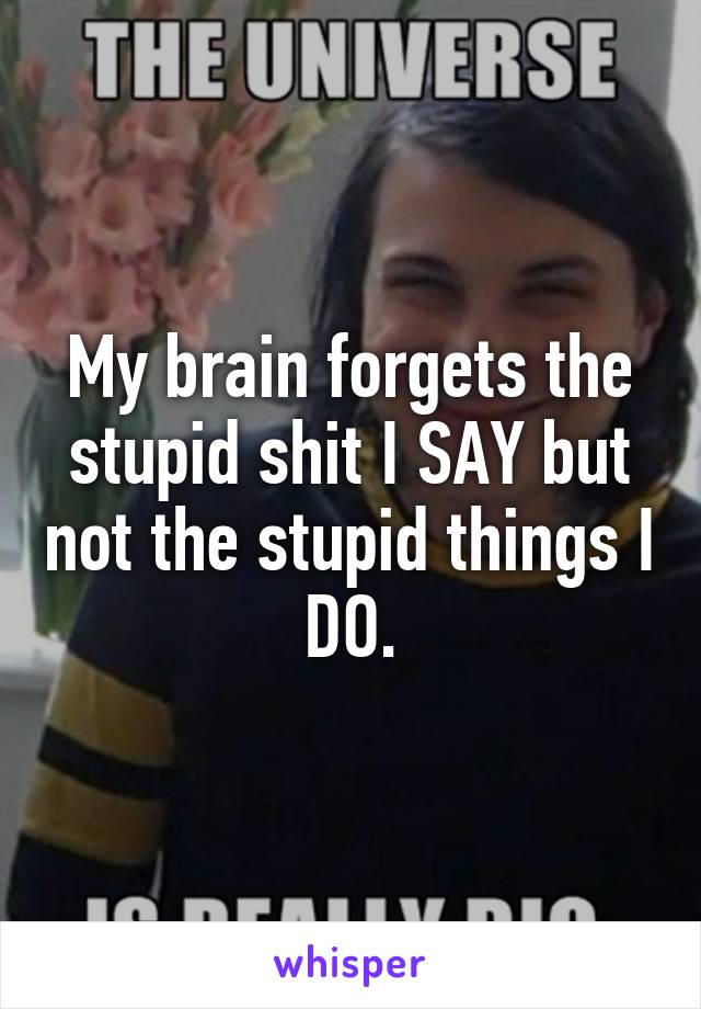 My brain forgets the stupid shit I SAY but not the stupid things I DO.