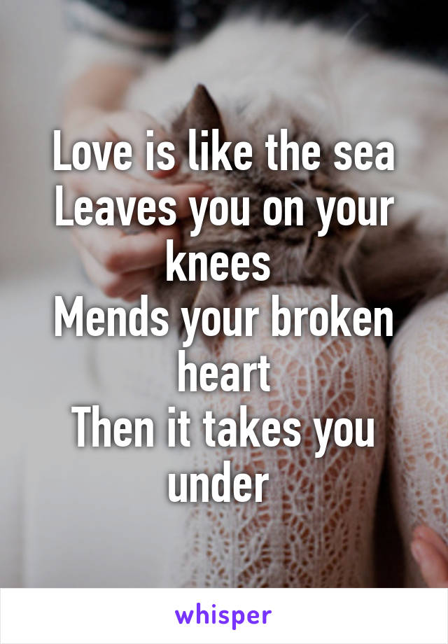 Love is like the sea Leaves you on your knees  Mends your broken heart Then it takes you under