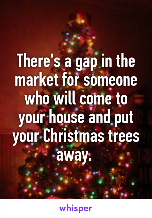 There's a gap in the market for someone who will come to your house and put your Christmas trees away.