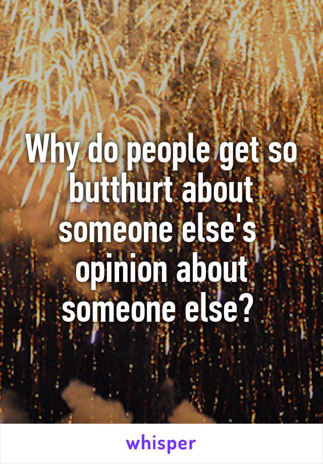 Why do people get so butthurt about someone else's  opinion about someone else?