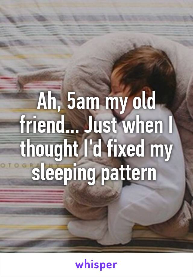 Ah, 5am my old friend... Just when I thought I'd fixed my sleeping pattern
