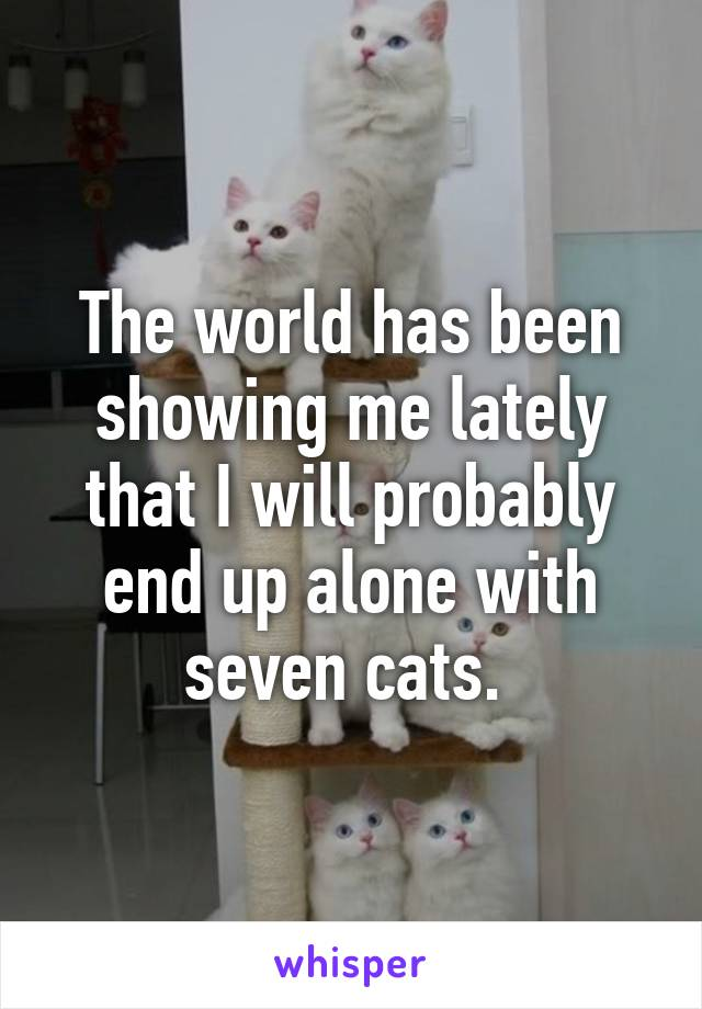 The world has been showing me lately that I will probably end up alone with seven cats.