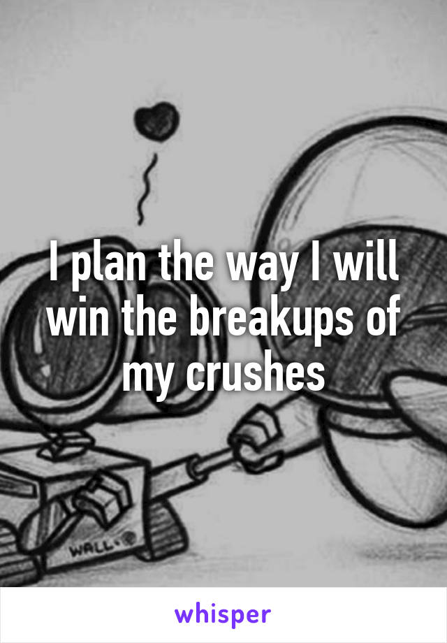 I plan the way I will win the breakups of my crushes