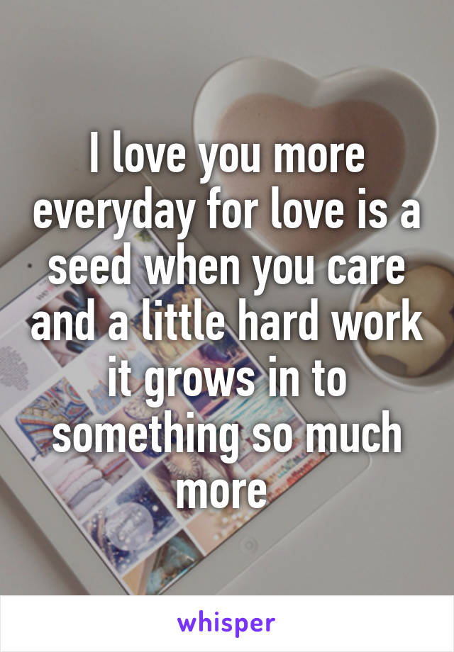 I love you more everyday for love is a seed when you care and a little hard work it grows in to something so much more
