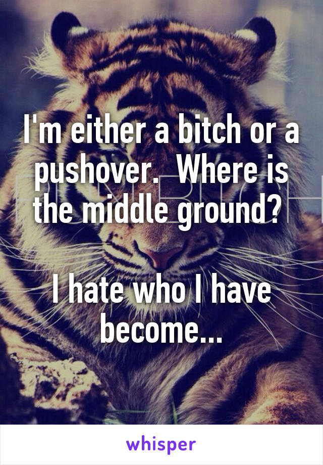 I'm either a bitch or a pushover.  Where is the middle ground?   I hate who I have become...