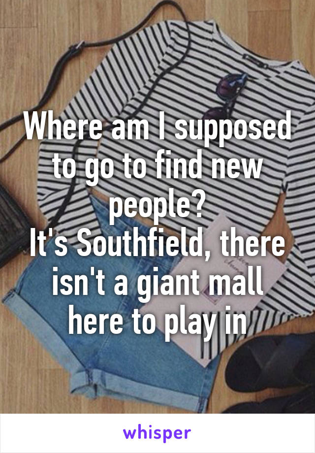 Where am I supposed to go to find new people? It's Southfield, there isn't a giant mall here to play in