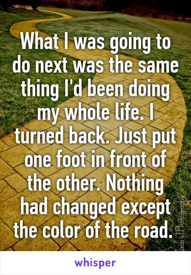 What I was going to do next was the same thing I'd been doing my whole life. I turned back. Just put one foot in front of the other. Nothing had changed except the color of the road.