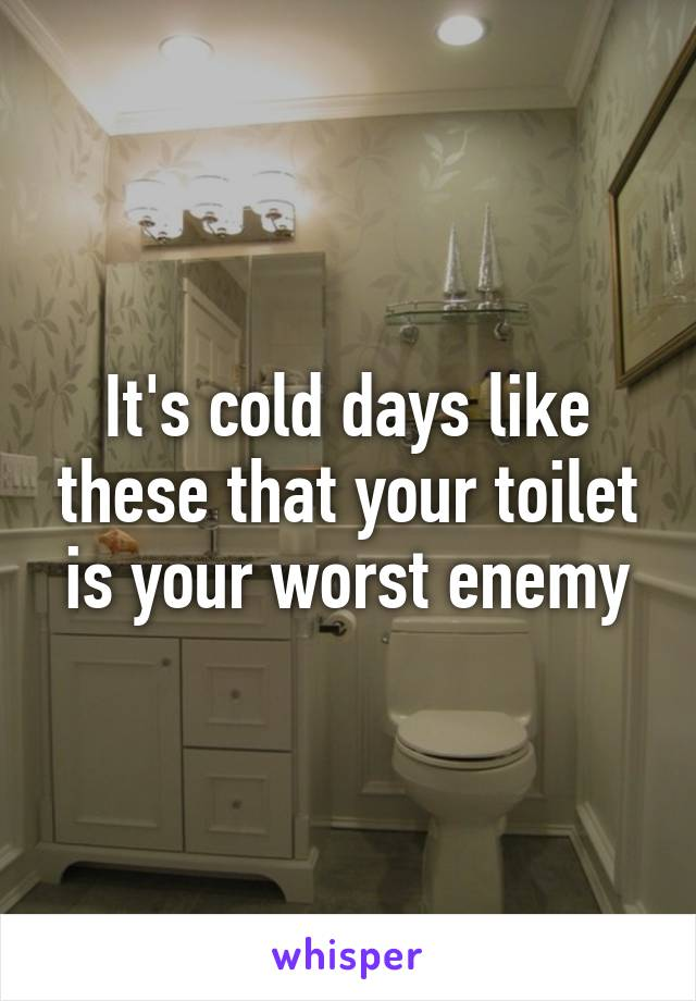 It's cold days like these that your toilet is your worst enemy
